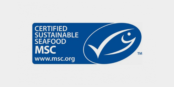 Maine Lobster Fishery Awarded the Marine Stewardship Council's Sustainable Seafood Certification ...