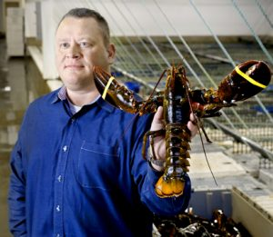 Tom Adams, owner of Maine Coast has built a $40 million business in four years by focusing on international markets for Maine lobsters. His York business has 25 full-time employees.